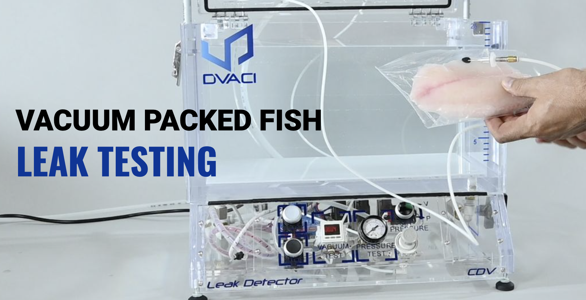 vacuum packed fish leak testing 2